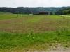 Blick auf den Flurhof, Wilen bei Wil