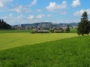 Blick ab Gruebenholz in Richtung Wilen bei Wil (Vordergrund) und Wil (Hintergrund)
